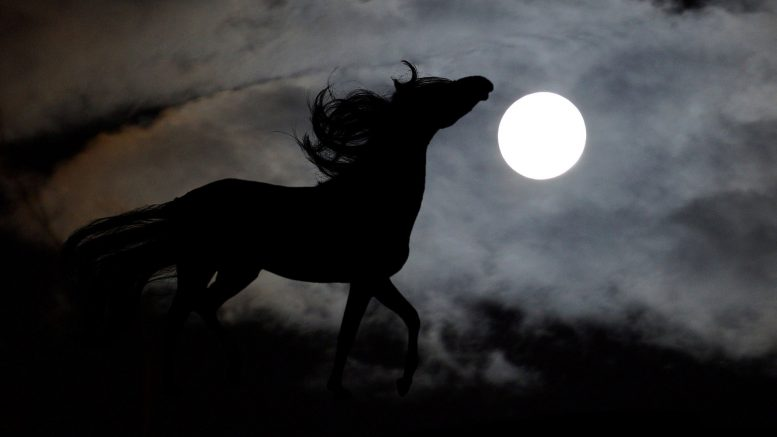 Pooka Black Horse from Irish Folklore
