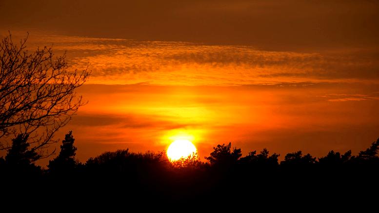 Bealtaine Sun