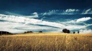lughnasadh harvest